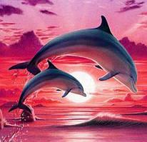 Алмазная вышивка мозаика Diy Дельфины на закате  DZDP1049 30х40см квадратные стразы, полная зашивка, 20 цветов
