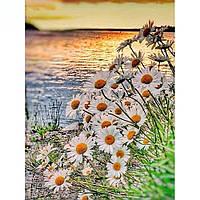 Алмазная вышивка мозаика Diy Ромашки у озера  DZDP716 30х40см квадратные стразы, полная зашивка, 20 цветов