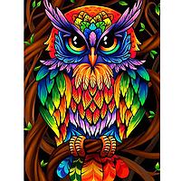 Алмазная вышивка мозаика Diy Красочный филин  DZDP1241 30х40см квадратные стразы, полная зашивка, 20 цветов