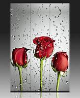 """Ширма деревянная """"Розы"""""""