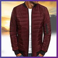 Молодежная куртка мужская короткая демисезонная бордо, бомбер без капюшона, ветровка осень весна