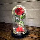 Стабилизированная роза в колбе с led подсветкой вечная долгосвежая цветы ночник подарок на 8 марта, фото 3