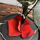 Стабилизированная роза в колбе с led подсветкой вечная долгосвежая цветы ночник подарок на 8 марта, фото 8