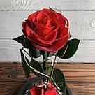 Стабилизированная роза в колбе с led подсветкой вечная долгосвежая цветы ночник подарок на 8 марта, фото 10