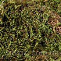 Заповнювач мох сфагнум для тераріуму 200 г Тріксі