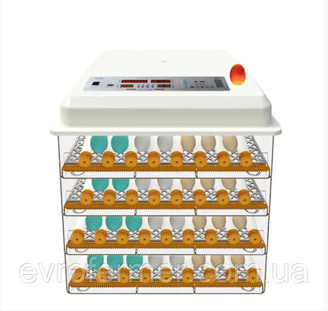 Інкубатор автоматичний Птаха 232 (220 / 12В) з роликовим переворотним механізмом