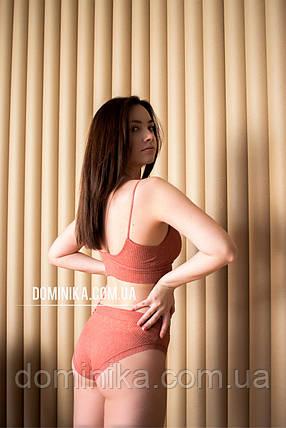 Терракотовый набор трусики слипы и бесшовный топ, комплект женского нижнего белья с открытой спиной, фото 2