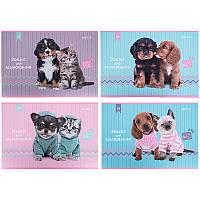 Альбом для рисования Kite Studio Pets 24л скоба микс 4 диз (SP21-242)