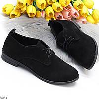 Класичні чорні жіночі туфлі з натуральної замші низький хід