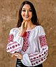 Жіноча вишиванка шифон Традиційна