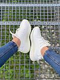Adidas Yeezy Boost 350 Cream White (белые), фото 3