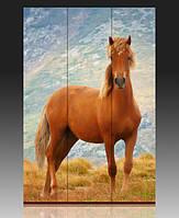 """Ширма деревянная """"Лошадь"""""""