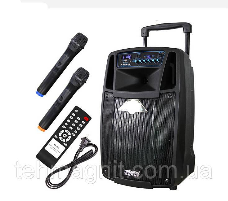 Колонка з мікрофонами Temeisheng SL12-01