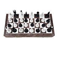 Класичні шахи, фото 2