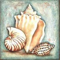 Алмазная мозаика Морские раковины DM-214 30x30см Полная зашивка. Набор алмазной вышивки