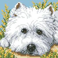 Алмазная мозаика Взгляд щенка 18x18см DM-007 Полная зашивка. Набор алмазной вышивки