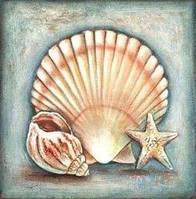 Алмазная мозаика Морская ракушка DM-213 30x30см Полная зашивка. Набор алмазной вышивки