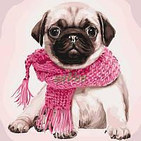 Картина по номерам Мопс Собака Art Craft Раскраска 40х40 см Набор для рисования (32027)