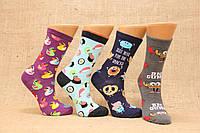 Жіночі шкарпетки високі комп'ютерні EKMEN асорті м-3