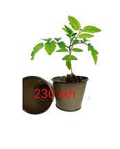 Стакан під розсаду Одеса 230мл (ДВ-7,5/ДН-6/В-6,7) (3500 шт)
