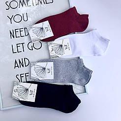 Короткие женские носки V&T socks однотонные