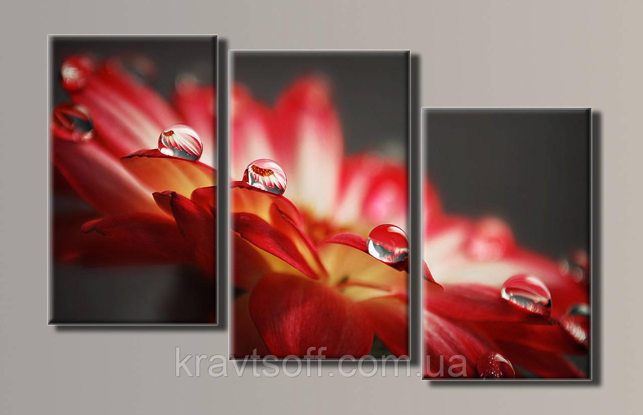 """Модульна картина на полотні з 3-х частин """"Краплі на квітці"""" ( 60х95 см )"""