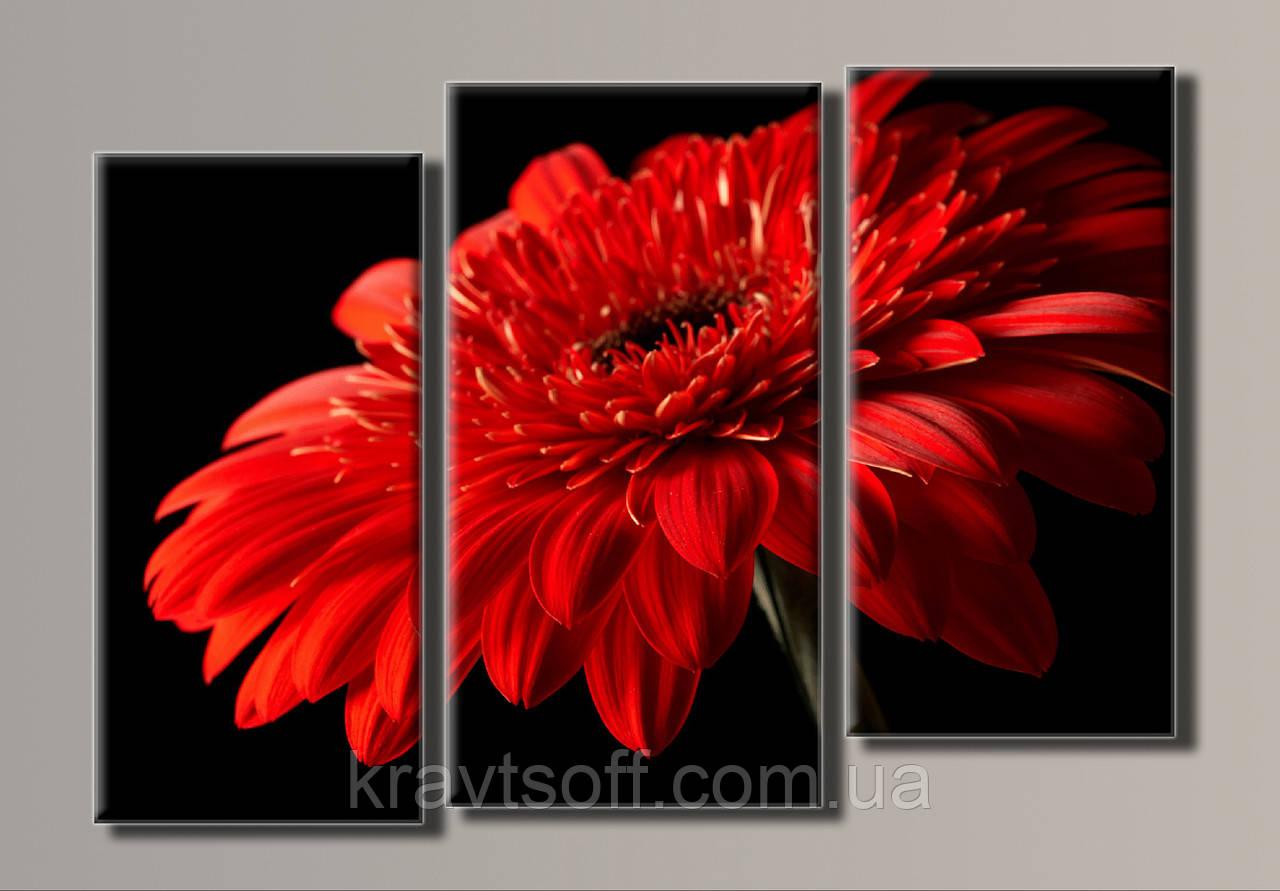 """Модульная картина на холсте из 3-х частей """"Красная гербера"""" ( 57х80 см ) арт.HAT-064"""