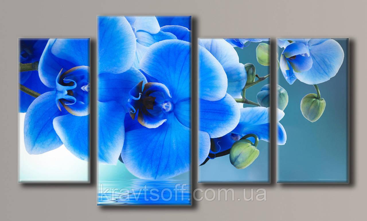 "Модульная картина на холсте из 4-х частей ""Синие орхидеи"" ( 55х96.5 см )"