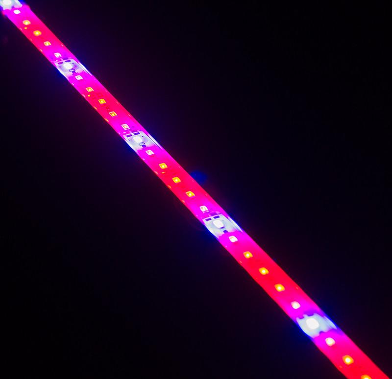 Светодиодный фито-светильник SMD5630 4:2 144LED для растений