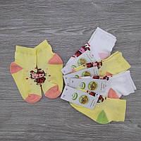 Шкарпетки дитячі з сіткою, для дівчинки, ЕКО, р. 12(1-2), асорті, 30030720