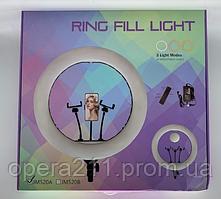 Кільцева Лампа / RING LIGHT 21 (54см) 520A + MIRROR + BAG (6шт)