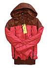 Распродажа Демисезонные Куртки Размеры 40-44. Утеплитель тинсулейт Фабричный Китай, фото 4