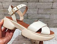 Жіночі шкіряні босоніжки, сандалі TIFFANY на танкетці платформі оптом