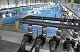 Акваферма УЗВ по выращиванию форели 12 т/год, фото 5