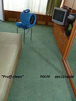 Сушка ковров , мягкой мебели после чистки