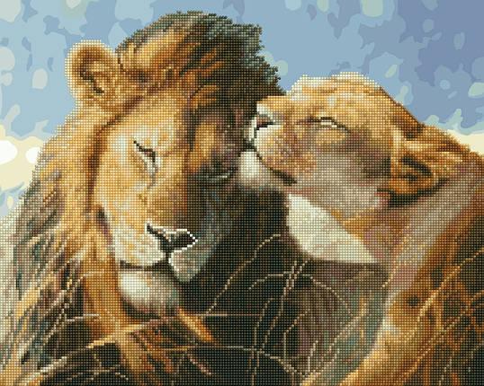Львиная любовь, фото 2