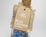 """Смесь для коктейля Drink Master """"Blue Lagoon"""" (Голубая лагуна) - коктейль для вечеринки, фото 2"""