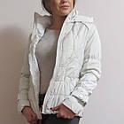 Куртка Фабричная со Съемным Капюшоном. Oil Bird Китай Последний р. S Распродажа, фото 3