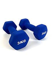 Гантели для фитнеса NEO-SPORT 3 кг. x 2 шт., металл с виниловым покрытием (синие)