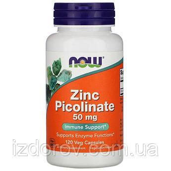 Now Foods, Цинк picolinate 50 мг, Zinc Picolinate, 120 рослинних капсул