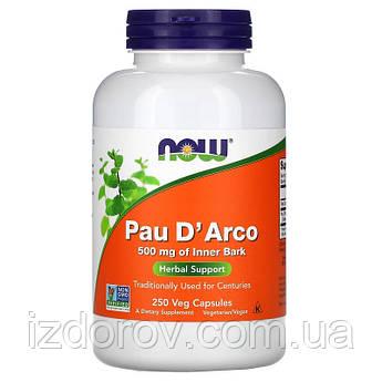 Now Foods, Pau D'Arco, Кора муравьиного дерева Пау Д'Арко, 500 мг, природный антибиотик, 250 капсул