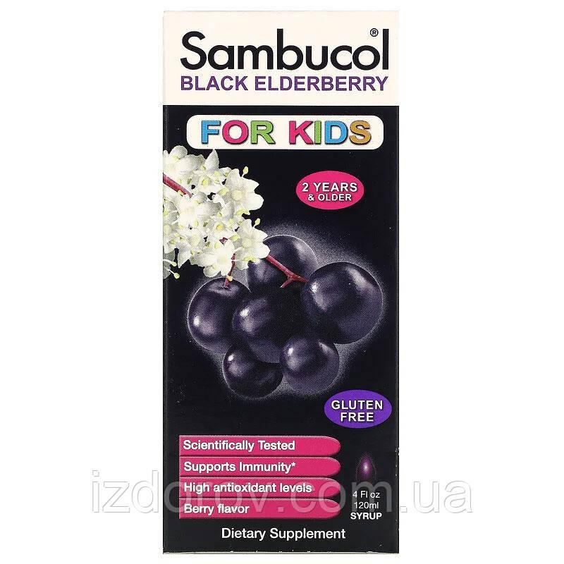 Sambucol, Чорна бузина, сироп від кашлю для дітей, для зміцнення імунітету, 120 мл