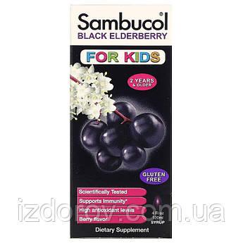 Sambucol, Черная бузина, сироп для детей, поддержка иммунной системы, Black Elderberry, 120 мл