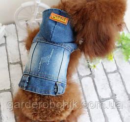 """Куртка, пиджак джинсовый """"VOGUE"""" для собаки S-XXL. Одежда для собак."""