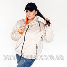 Жіноча  куртка «Санта» без капюшона