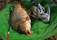 Набори для ловлі риби на попла...