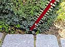 Кущоріз електричний Einhell GC-EH 5550/1 (Безкоштовна доставка), фото 10