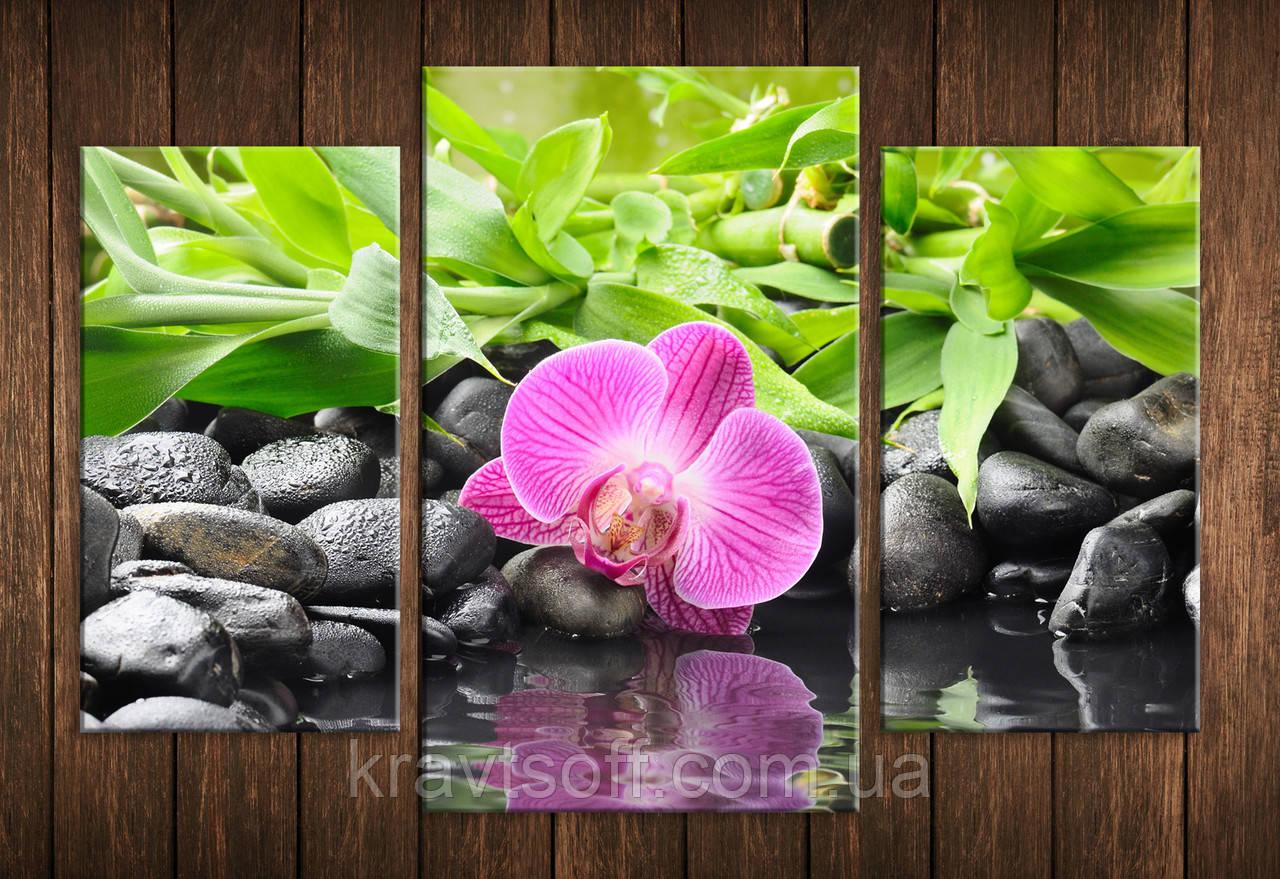 """Модульна картина на полотні з 3-х частин """"Орхідея на каменях"""" ( 70х105 см )"""