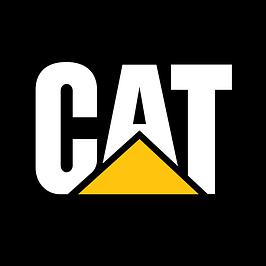 """Фильтра и фильтрующие элементы производства """"CAT"""""""