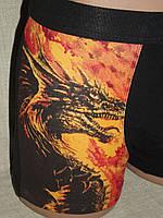 Боксеры шорты мужские стрейч дракон С+3 Польша, фото 1